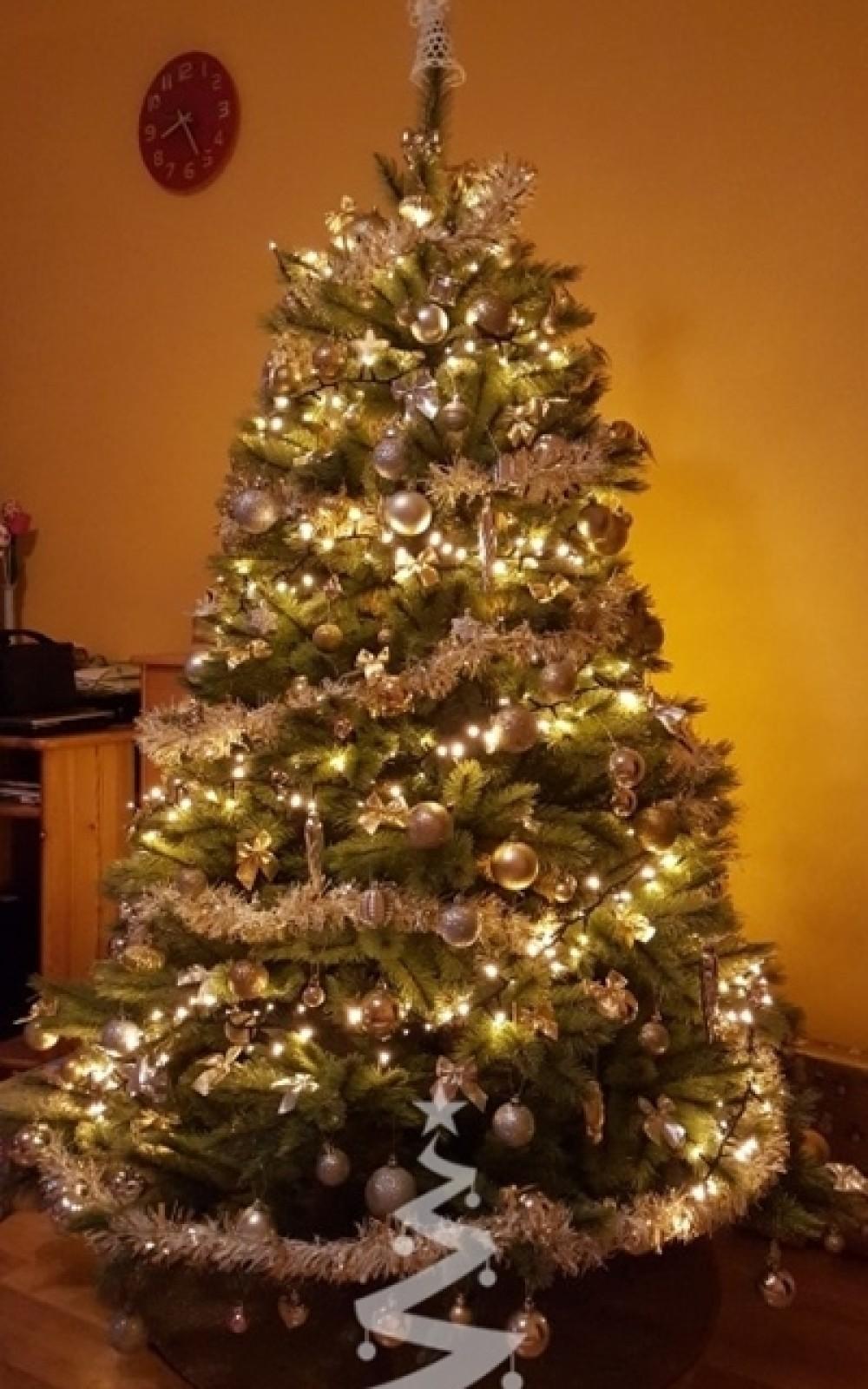 Karácsonyfa-Műfenyő-Forest Frosted Pine 230 cm