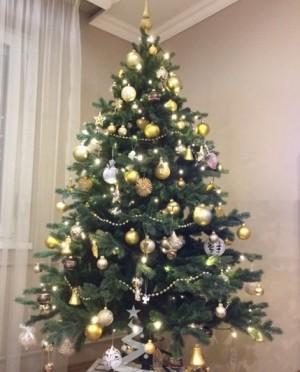 Karácsonyfa-Sherwood Spruce 185 cm-Műfenyő
